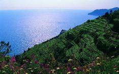 Landschaften-Ligurien
